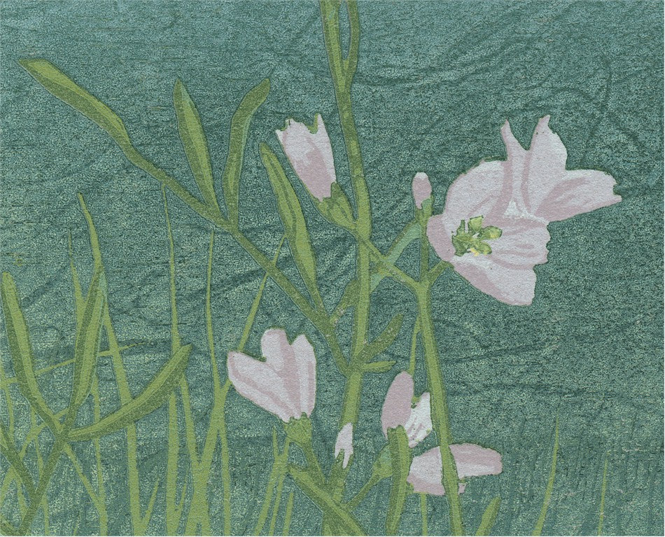 Grietje Postma - 2001 V -  flower - color woodcut reduction