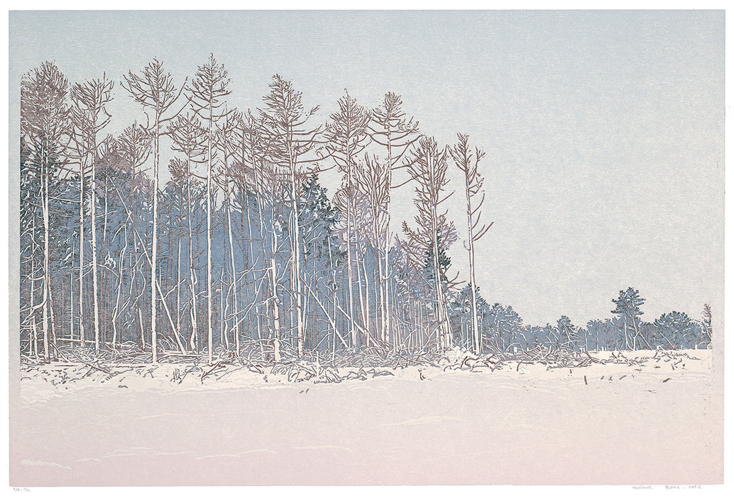Grietje Postma - 2018-II - color woodcut reduction - snowcape - snowy landscape desolate