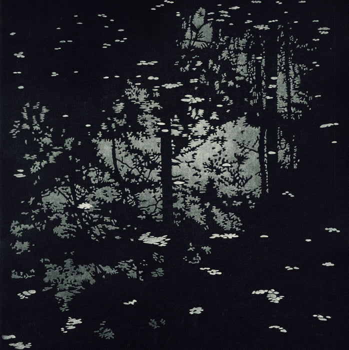 Jukka Vanttinen - Fall - mezzotint - reflection of trees in puddle with leaves