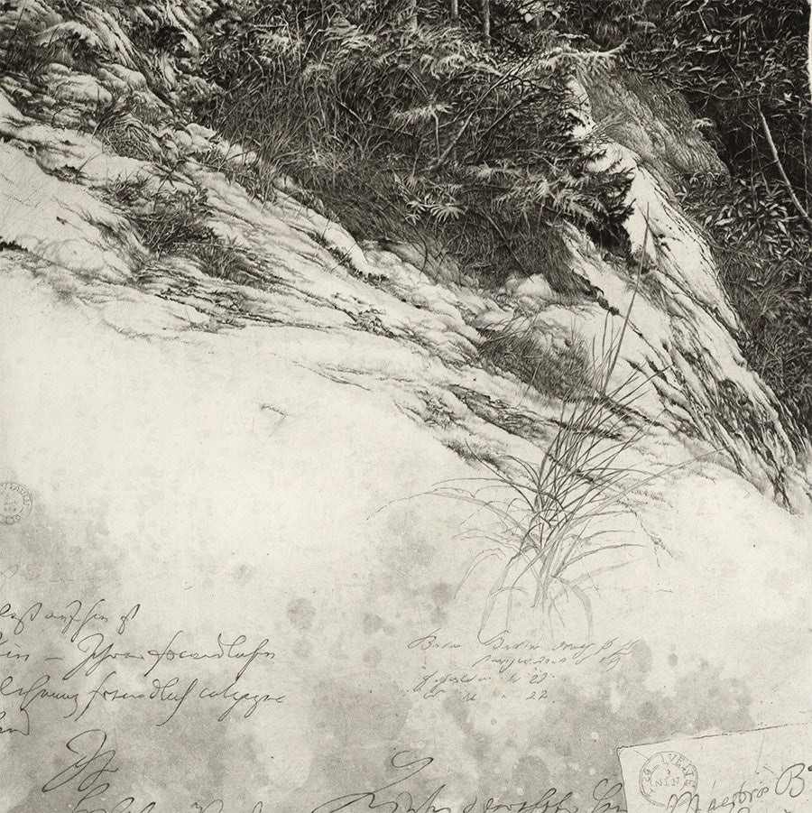 Livio Ceschin - Ai Margini del Dirupo - At the Edge of the Cliff - etching drypoint - detail