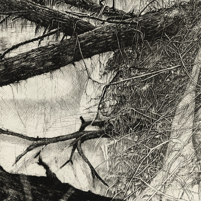 Livio Ceschin - La'Dove Sgorgano Torrenti - Where the Torrents Flow - etching aquatint - detail