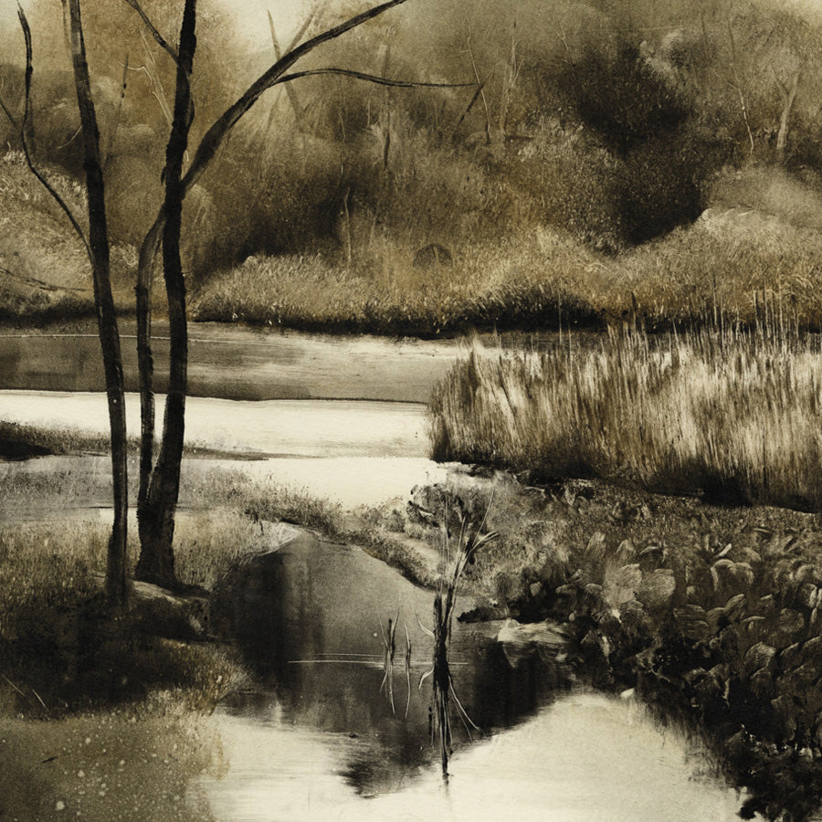 Marketa Kemp - Lake Jubilee I - Monoprint detail,  2019.