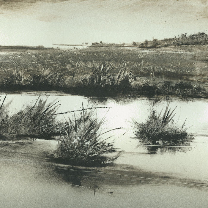 Marketa Kemp - Wetlands IV - monotype - Australia - marsh - marshes - tall grasses - detail