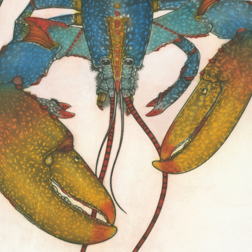 Michel Estebe - Homard Bleu de Bretagne - Blue Lobster from Brittany - color mezzotint