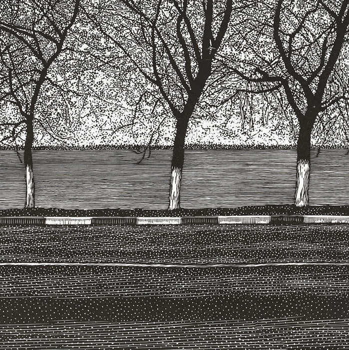 Olesya Dzhuraeva - Calm Water - canalside riverside roadway - painted curb treetrunks row - detail