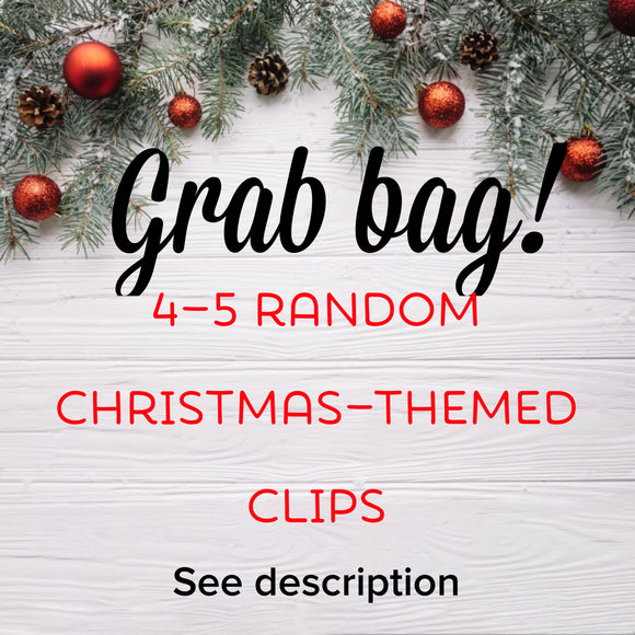 Grab Bag Christmas Themed Planner Clips