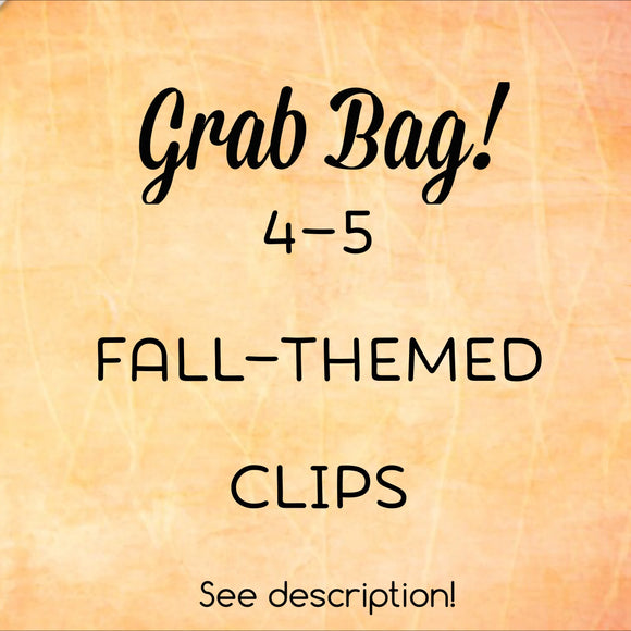 Grab Bag Fall Themed Planner Clips