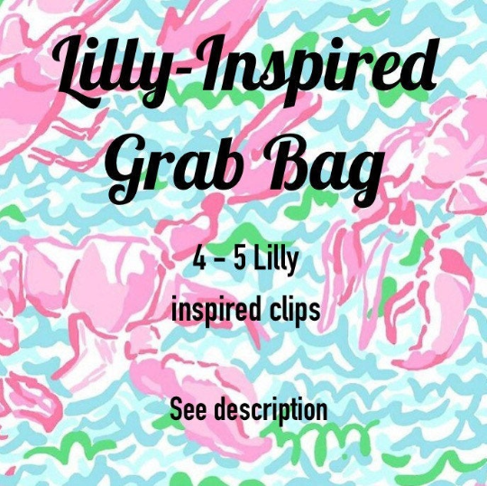 Lilly-Inspired Planner Clip Grab Bag