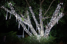 Load image into Gallery viewer, pure white 5mm LED strands branch wrapped