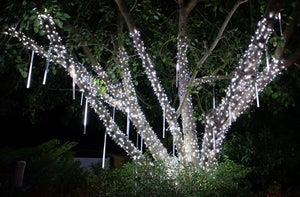 5mm pure white LED lights installed on tree
