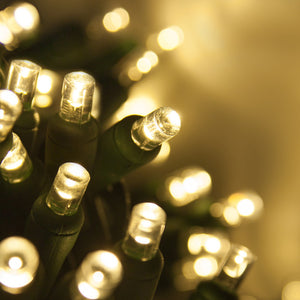 warm white LED Christmas lights
