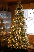 Load image into Gallery viewer, M5 warm white lights on evergreen tree