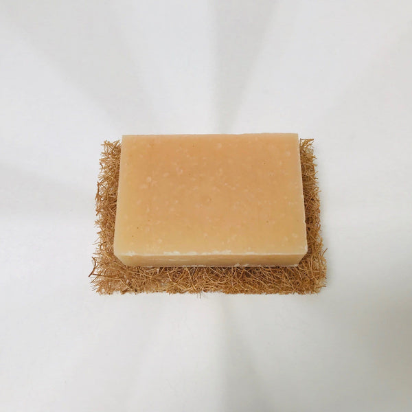 soap TRAVEL bar (all in one)