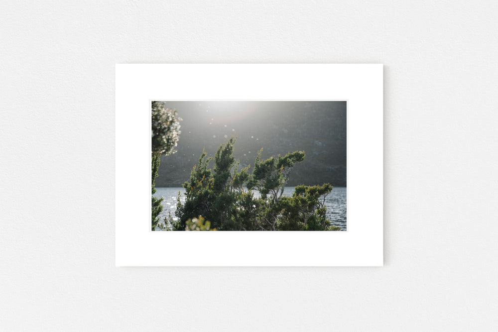 Dove Lake Memento Print