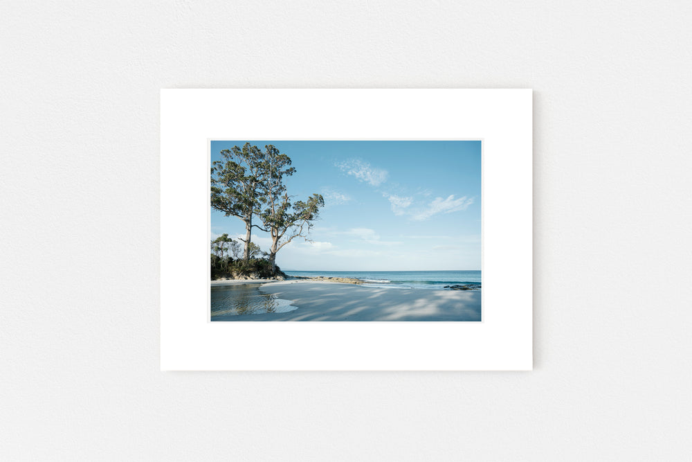 Two Tree Point Memento Print