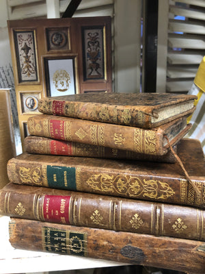 Antique French leatherbound books