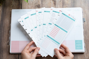 Create your perfect insert | New Release - Daily Docket
