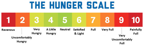 Intuitive Eating Hunger/Fullness Scale