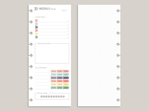 Weekly Focus PRINTED Planner Inserts for 2020 inkWELL Press Planners IWP-RI8