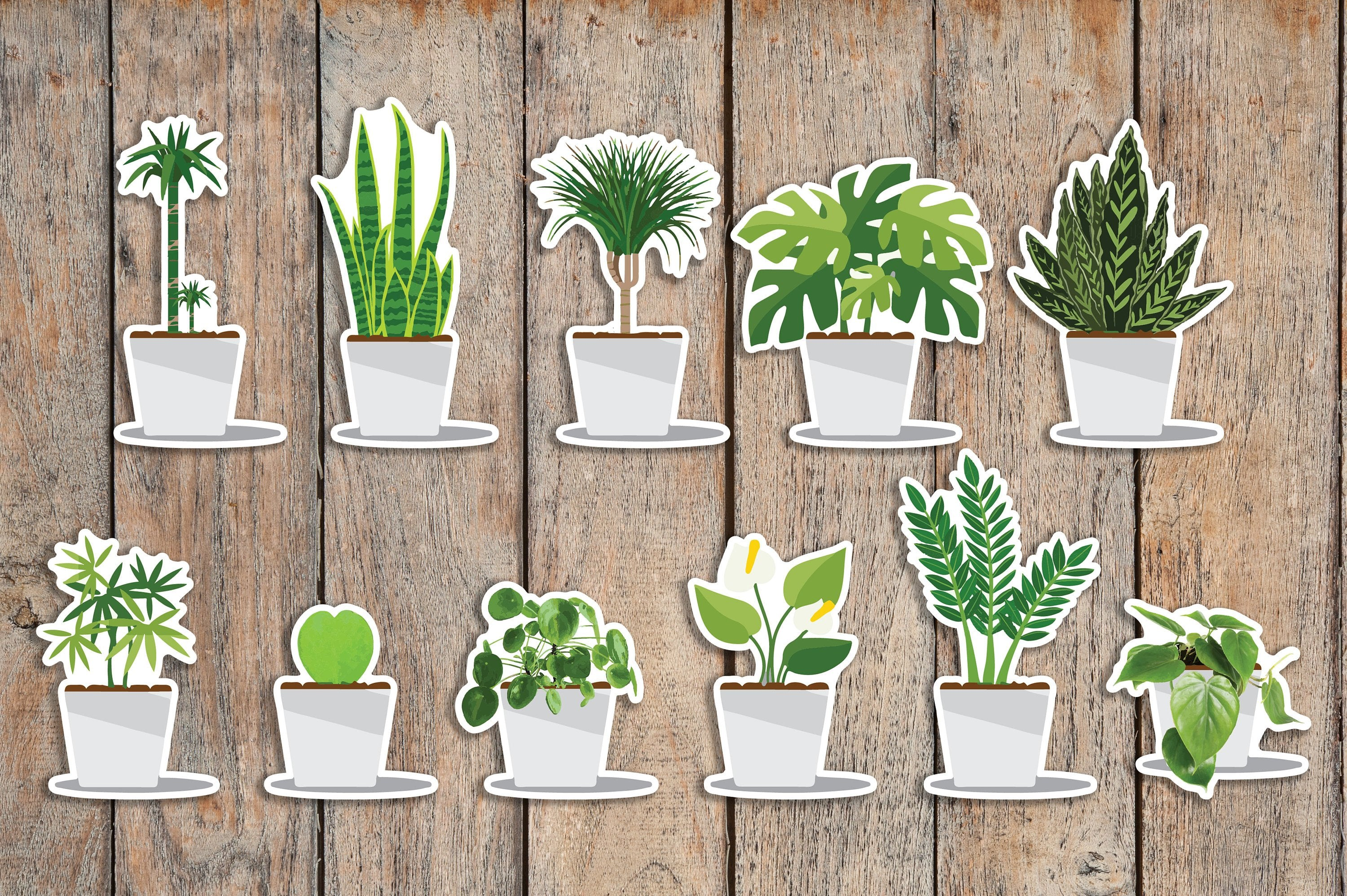 55 Water Plants, Plant Care Icon Planner Stickers FL1