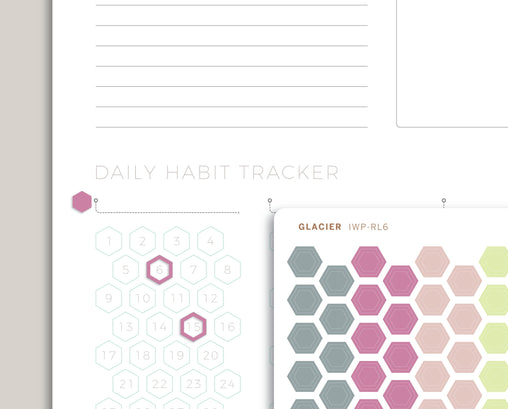 Outlined Habit Tracker & Mini Hexagons Stickers for 2020 inkWELL Press Planners IWP-RL6