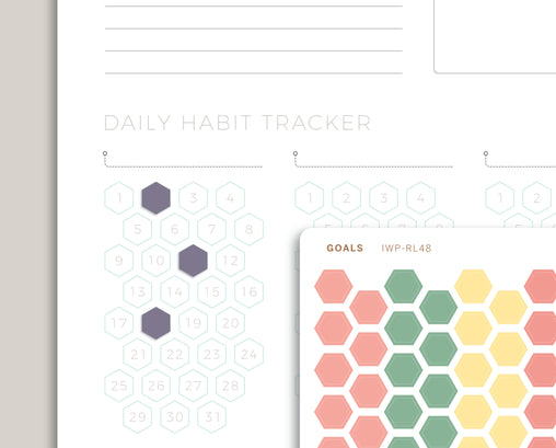 Habit Tracker GOAL Hexagon Stickers for 2020 inkWELL Press Planners IWP-RL48