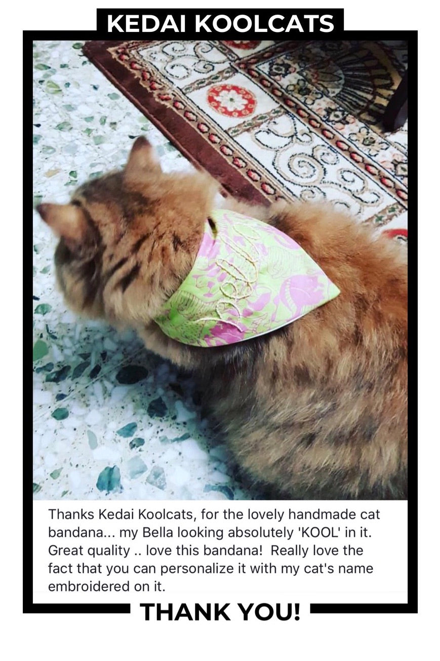 Cat Collar Bandana with Hand Embroidered Name