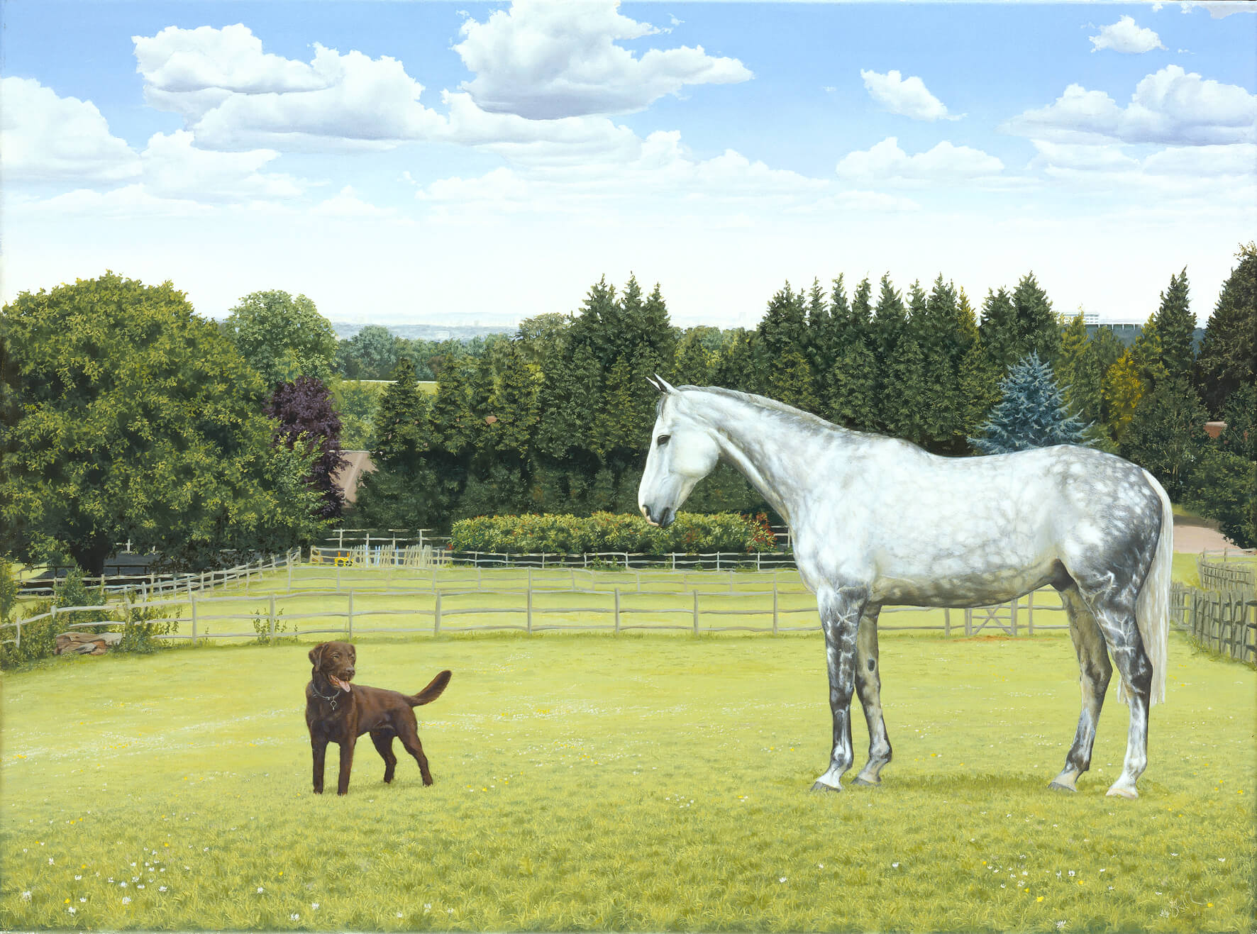 Horse portrait oil painting of a grey thoroughbred with a chocolate labrador.