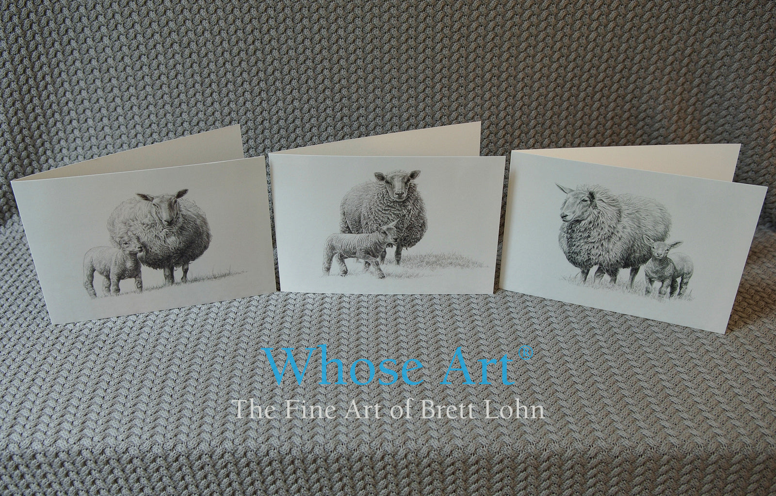 Lamb pencil drawing fine art greeting cards