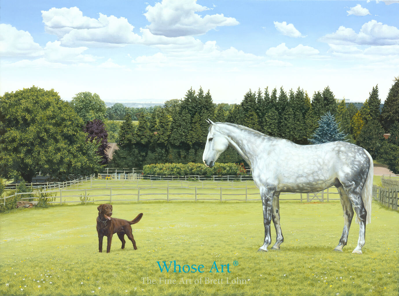 Oil Painting of Grey Horse with Chocolate Labrador in a field