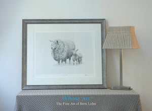Framed fine art print of a sheep & a lamb together. The picture is framed silver & shows a black & white drawing of the sheep