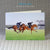 Horse Painting Greeting Card depicting two horses painted in oil on canvas on the gallops at Newmarket Heath as the sun rises