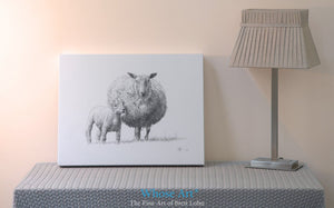 Sheep painting canvas print of a pencil drawing of a lamb with a sheep. This fine art canvas is unframed & sits on a table