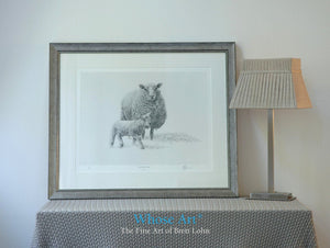 A wall art print framed in silver showing a sheep drawing in pencil of the sheep watching over a newborn lamb.