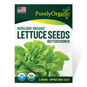 Purely Organic Heirloom Lettuce Seeds (Buttercrunch) - COMING SOON