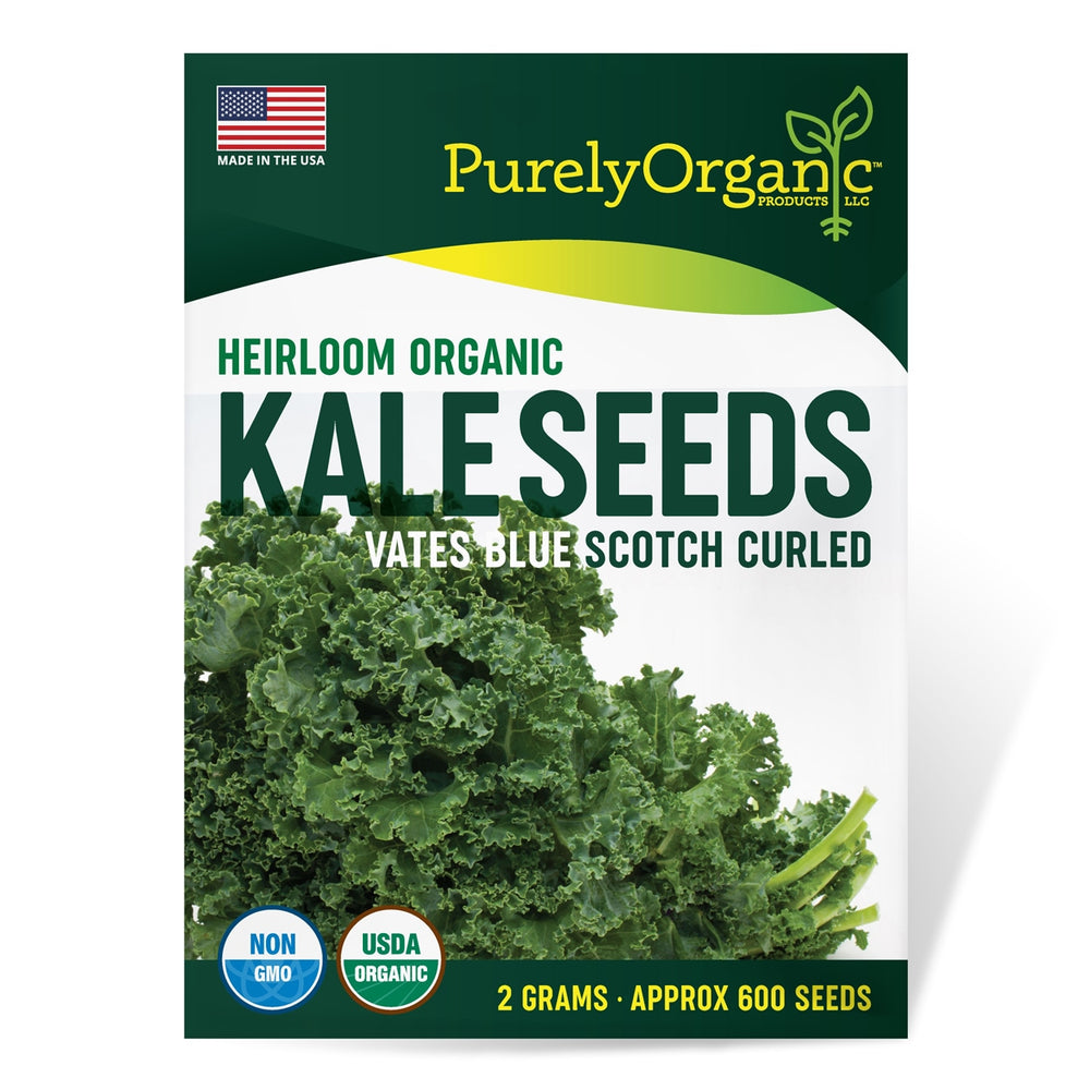 Purely Organic Heirloom Kale Seeds (Vates Blue Scotch Curled) - Approx 600 Seeds