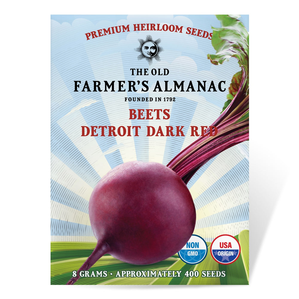 The Old Farmer's Almanac Heirloom Beet Seeds (Detroit Dark Red) - Approx 400 Seeds