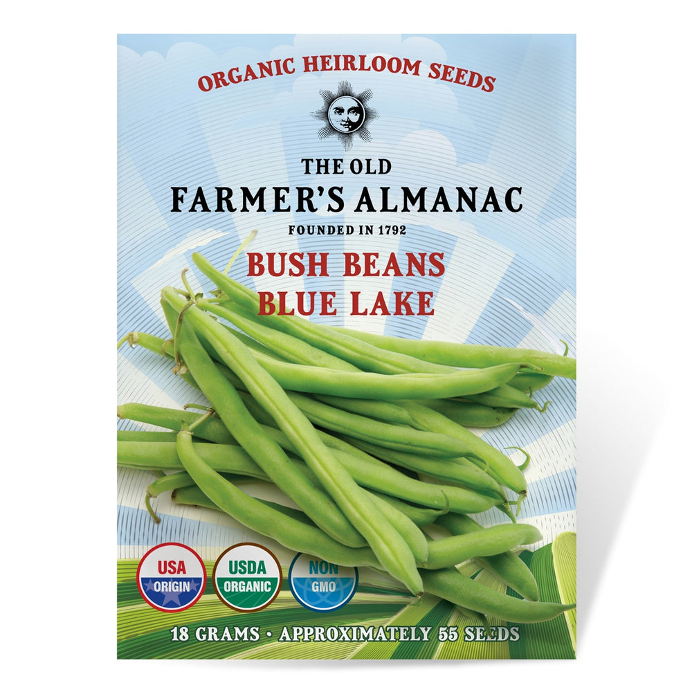 The Old Farmer's Almanac Organic Bush Bean Seeds (Blue Lake) - COMING SOON