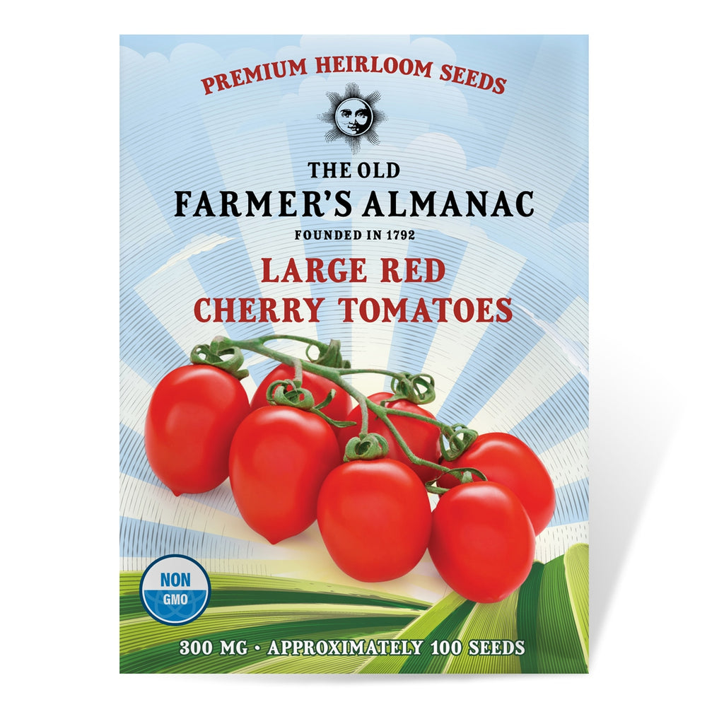 The Old Farmer's Almanac Tomato Seeds (Large Red Cherry) - Approx 100 Seeds