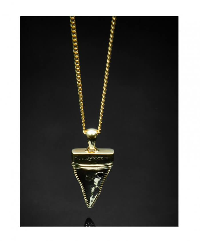 Shungite Shark Tooth Pendant + Chain