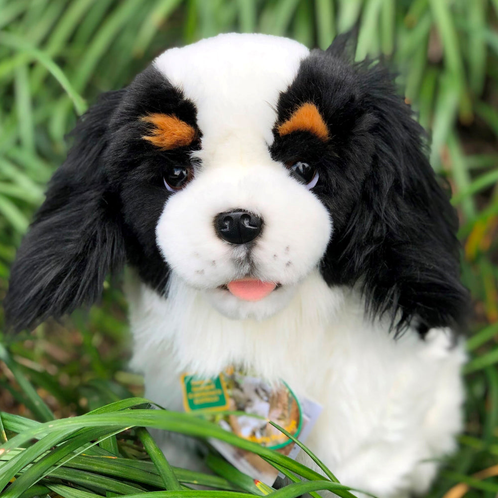 Plush Pet - Cavalier King Charles Spaniel -