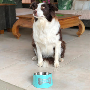 Pawsonalised Dog Bowl