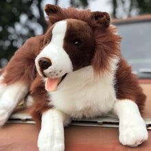 "Load image into Gallery viewer, Plush Pet - Brown Collie - ""Fudge"""