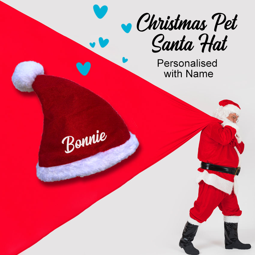 Christmas Pet Santa Hat