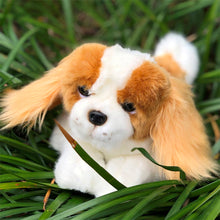 "Load image into Gallery viewer, Plush Pet - Cavalier King Charles Spaniel - ""Phoebe"""