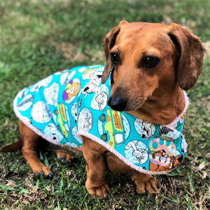 Scooby Doo Custom Dog Jacket