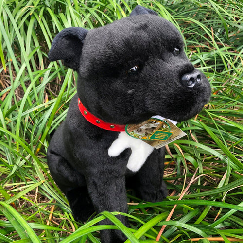 Plush Pet - Staffy Staffordshire Bull Terrier -