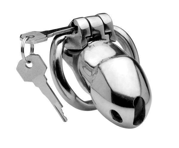 Rikers 24-7 Stainless Steel Locking Chastity Cage - Fun and Kinky Sex Toys
