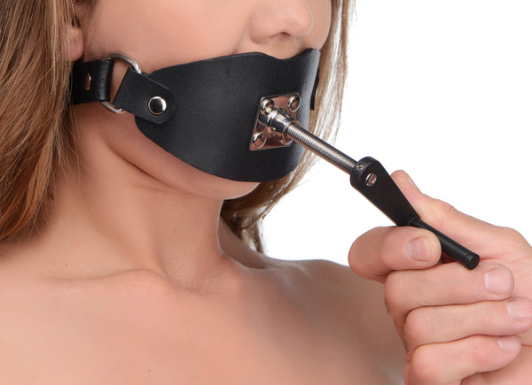 Crank Ball Gag - Fun and Kinky Sex Toys