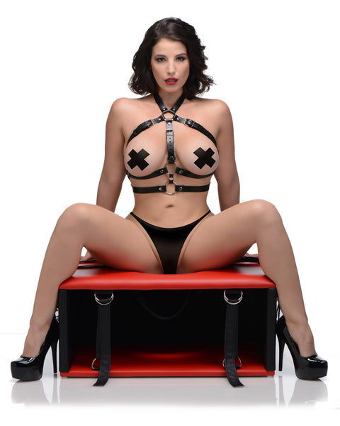 Queening Chair - Fun and Kinky Sex Toys